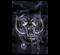 Рубашка Motörhead - фото 9949
